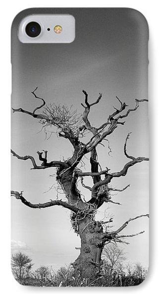 Stark Tree Phone Case by Pixel Chimp