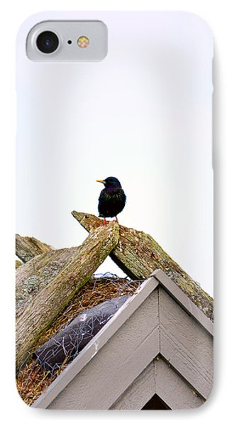 Starling On Old House IPhone Case