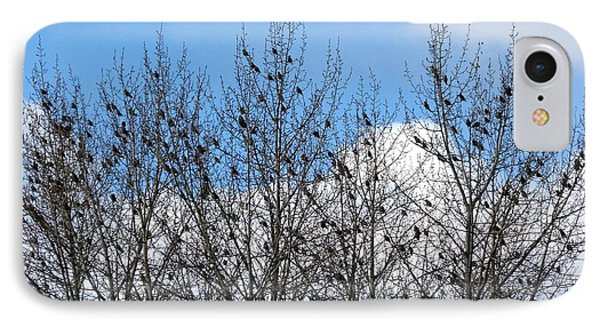 Starlings In The Cottonwoods Phone Case by Will Borden