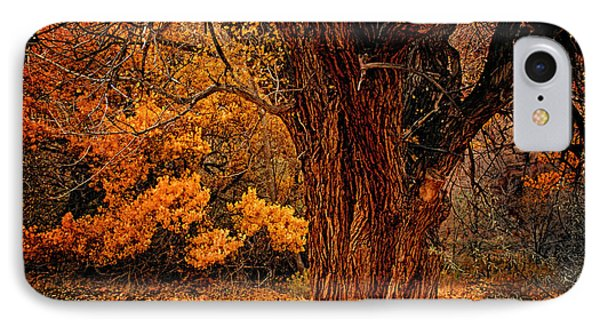 IPhone Case featuring the photograph Stately Oak by Priscilla Burgers