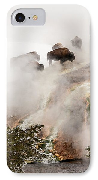 Steamy Bison IPhone Case by Sue Smith