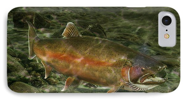 Steelhead Trout Spawning IPhone Case by Randall Nyhof