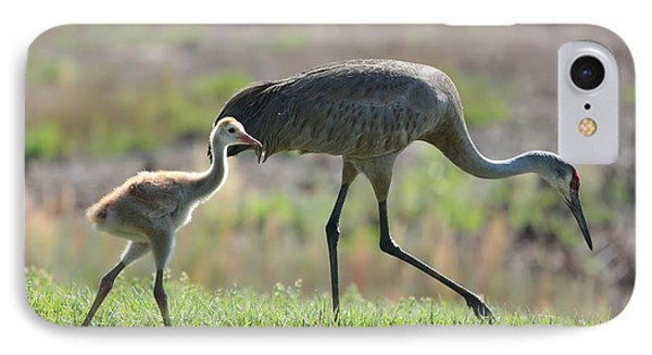 Stepping Out With My Baby IPhone Case by Carol Groenen