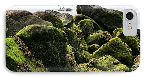 Stepping Stones Park Phone Case by JC Findley