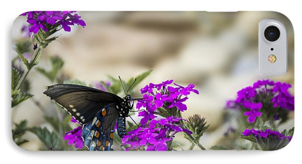 Still Beautiful Swallowtail IPhone Case by Penny Lisowski