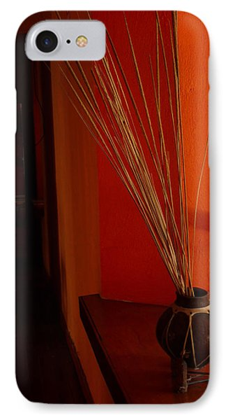 IPhone Case featuring the photograph Still Life In Baja by Alan Socolik