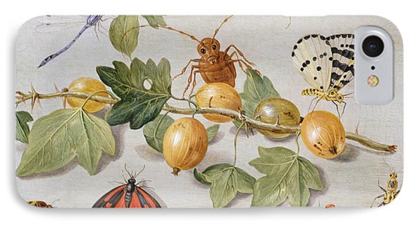 Still Life Of Branch Of Gooseberries Phone Case by Jan Van Kessel