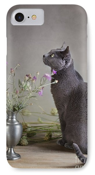 Still Life With Cat IPhone Case by Nailia Schwarz