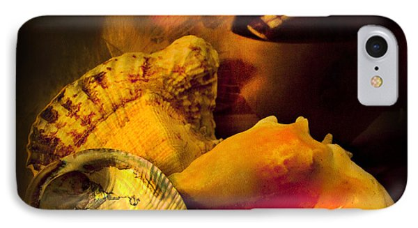 Still Life With Shells IPhone Case by Theresa Tahara