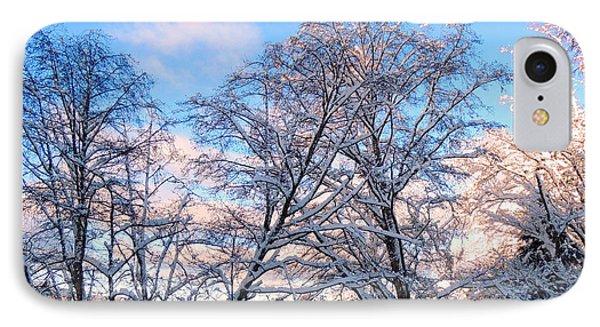 Still Of Winter IPhone Case by Karen Horn