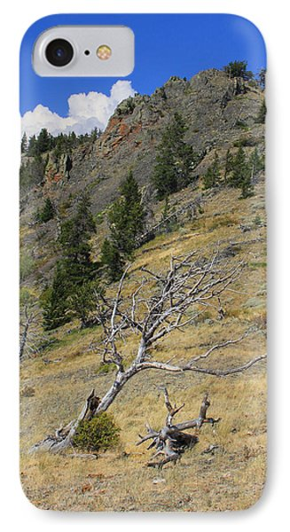 IPhone Case featuring the photograph Still Standing by Kathleen Scanlan