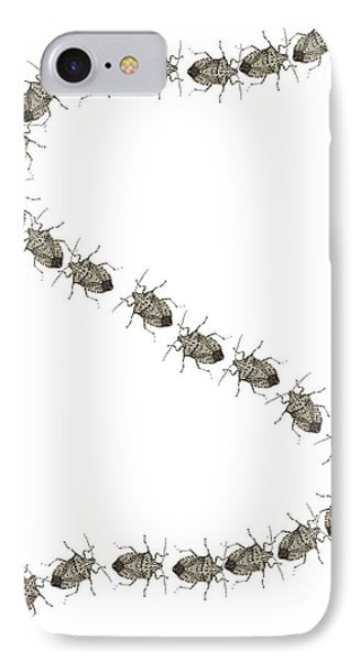 Stink Bugs I Phone Case IPhone Case by R  Allen Swezey
