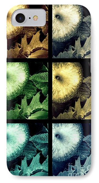 Stone Apples IPhone Case by France Laliberte