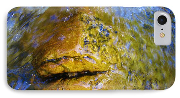 Stone Fish IPhone Case by Janice Westerberg
