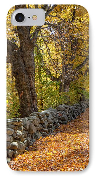 Stonewall In Autumn Phone Case by Donna Doherty