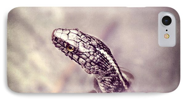 IPhone Case featuring the photograph Stony Stare by Melanie Lankford Photography
