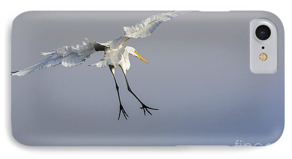 Stork Landing IPhone Case by David Millenheft