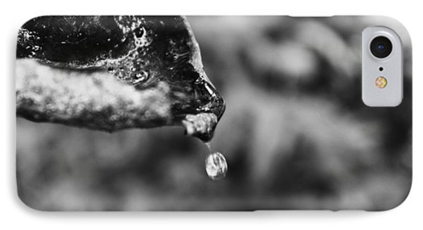 IPhone Case featuring the photograph Storm Drop by Candice Trimble