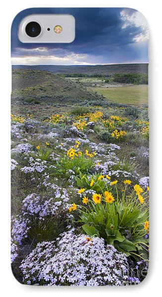 Storm Over Wildflowers IPhone Case