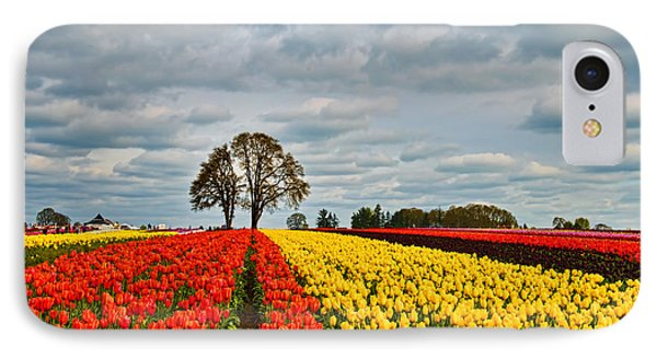 Storm Over Wooden Shoe Tulip Farm IPhone Case by Peter Dang