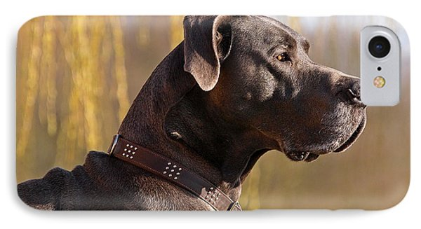 Storm The Great Dane IPhone Case