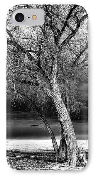 Storm Tree IPhone Case by Steven Reed