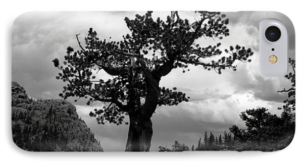 Storm Tree Phone Case by Tranquil Light  Photography