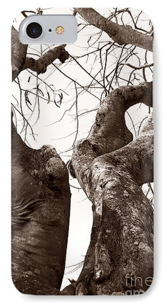 Story Tree IPhone Case by Jennifer Apffel