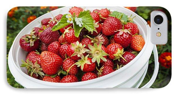 Strawberry Harvest IPhone 7 Case by Elena Elisseeva