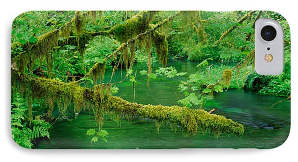 Stream Flowing Through A Rainforest IPhone Case by Panoramic Images
