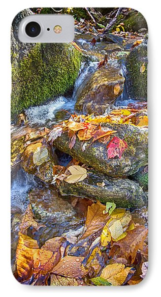 IPhone Case featuring the photograph Streaming Leaves by Alan Raasch