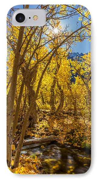 Streams Of Gold IPhone Case by Tassanee Angiolillo
