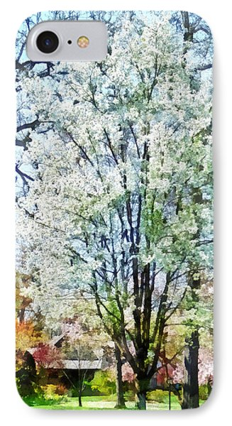 Street With White Flowering Trees Phone Case by Susan Savad