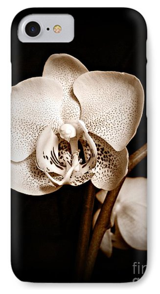 Strength And Beauty Sepia IPhone Case
