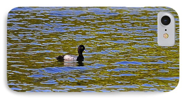 Striking Scaup Phone Case by Al Powell Photography USA