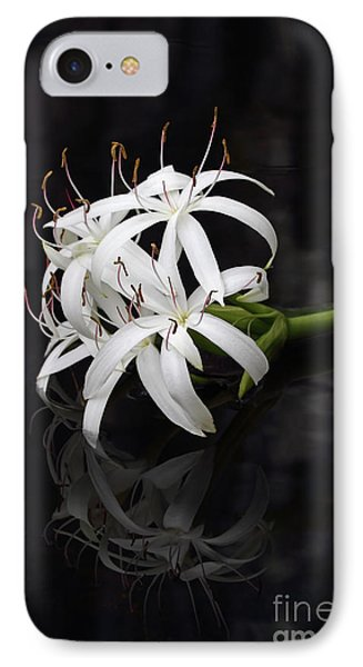 IPhone Case featuring the photograph String Lily #1 by Paul Rebmann