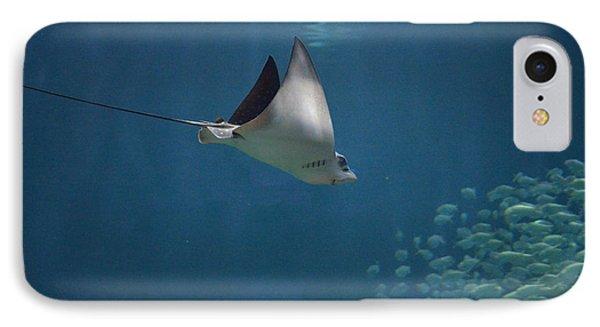 Stringray Heading Towards Fish IPhone Case by DejaVu Designs