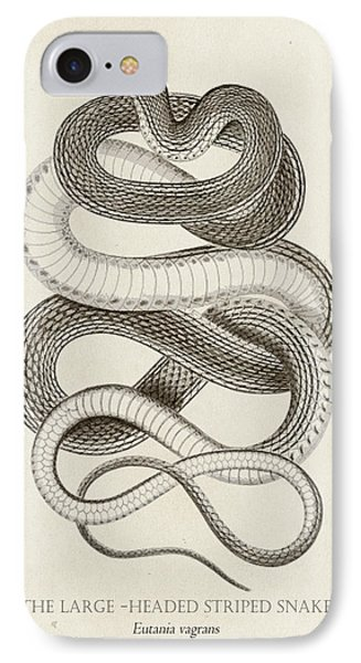 Striped Snake IPhone Case by Pati Photography