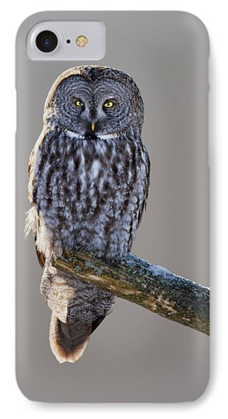 Strix Nebulosa Phone Case by Mircea Costina Photography
