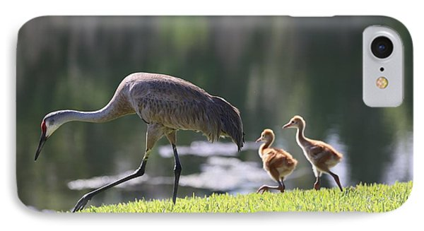 Stroll By The Pond IPhone Case by Carol Groenen