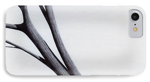 Strong Branches Between Light IPhone Case by Giuseppe Epifani