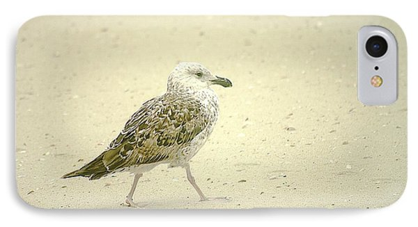 IPhone Case featuring the photograph Strutting Young Seagull  by Suzanne Powers
