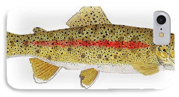 IPhone Case featuring the painting Study Of A Columbia River Erdband Trout by Thom Glace