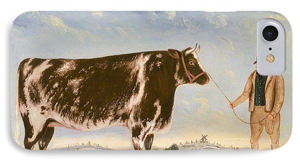 Study Of A Shorthorn IPhone Case