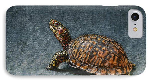 Study Of An Eastern Box Turtle IPhone Case by Rob Dreyer