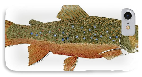 IPhone Case featuring the painting Study Of An Wild Eastern Brook Trout  by Thom Glace