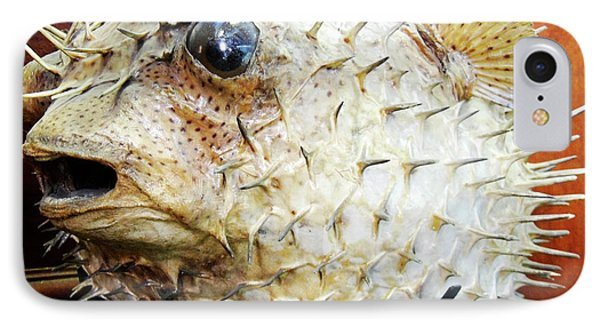 Stuffed Porcupinefish IPhone Case