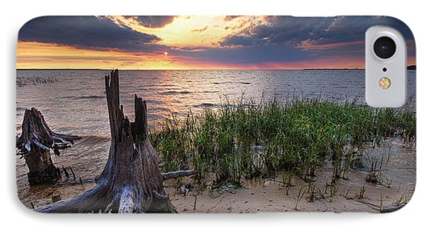 Stumps And Sunset On Oyster Bay IPhone Case by Michael Thomas