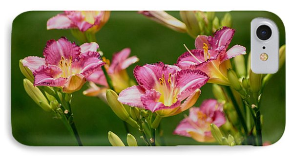 Stunning Day Lilies IPhone Case by Living Color Photography Lorraine Lynch