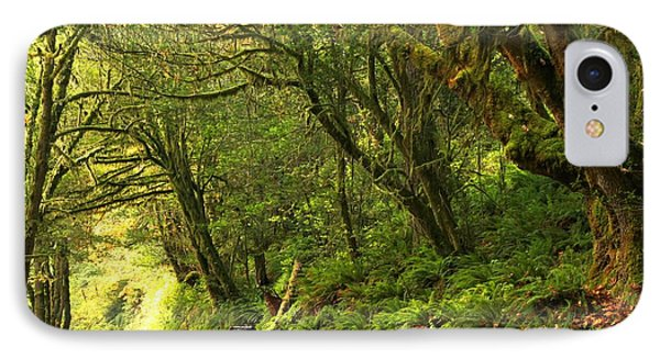 Subaru In The Rainforest IPhone Case by Adam Jewell
